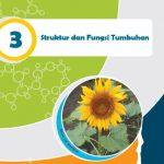 Rangkuman Materi IPA Kelas 8 Bab 3
