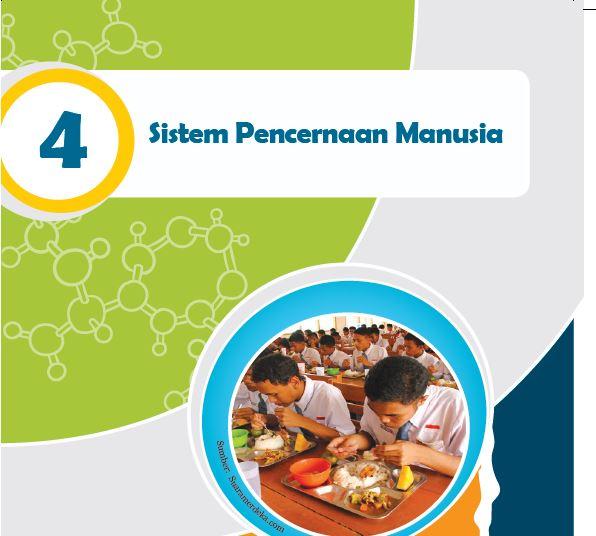 Rangkuman Materi IPA Kelas 8 Bab 4