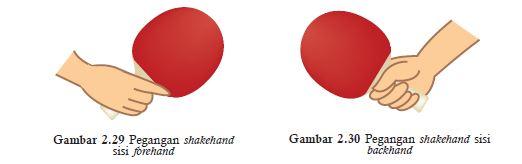 shakehand grip