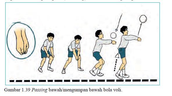 passing bawah bola voli