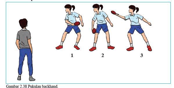 Materi PJOK Kelas 8 Tenis Meja